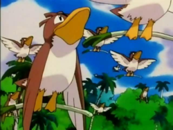 Isola Sud Farfetch'd.png