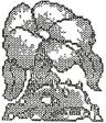 Early Ivysaur.png