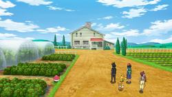 Azienda agricola Lando.png