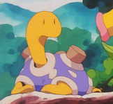 Old Man Shuckle Shiny Shuckle.png