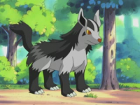 Max Mightyena AG011.png