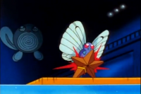 Ash Butterfree Azione.png