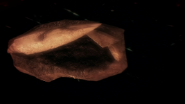 Fossile Genesect.png