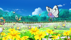 Isola del Tesoro Cutiefly Ribombee Butterfree Comfey.png