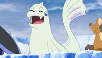 Maratona Pokémon tra gli iceberg Dewgong.png