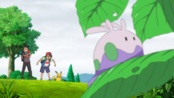 Goomy Terre Selvagge.png