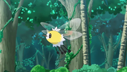 Cutiefly anime.png
