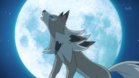 Lycanroc Forma Giorno anime.png