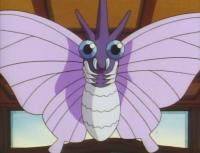 Venomoth di Koga