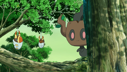 Phantump Terre Selvagge.png