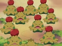 Le mele della discordia