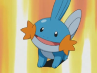 Mudkip di Professor Birch