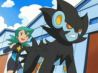 Marble Luxray.png