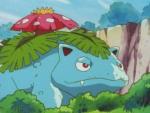 Pokémon Land Venusaur.png