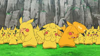 A Plethora of Pikachu!