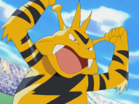 Macy Electabuzz.png