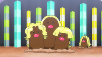 Shocking! Dugtrio Split Up!?