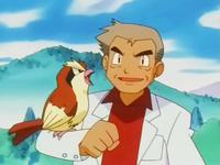 Pidgey di Professor Oak