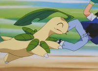 Ash Bayleef Azione.png