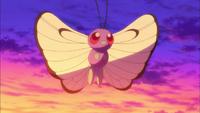 Caterpie→Metapod→Butterfree di Ash