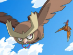 Noctowl anime.png