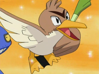 Holly Farfetch'd.png