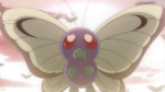 Ash Butterfree BW130.png