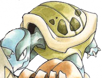Tartaruga senza nome