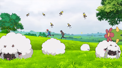 Wooloo anime.png