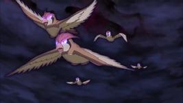 Marshadow Pidgey Pidgeotto.png