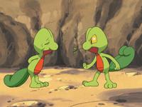 I Pokémon degli alberi