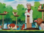 Laboratorio Professor Oak Pidgeotto Spearow.png