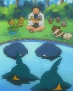 Birch various Pokémon.png