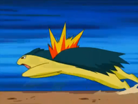 Jimmy Typhlosion.png