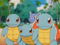 Squirtle EP060.png