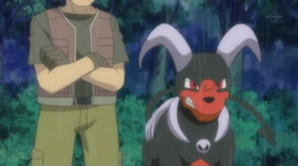 Proprietario Houndoom.png