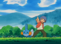 Tommy Mudkip.png