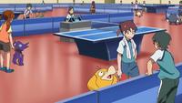Torneo di Ping Pong Pokémon Sableye Sudowoodo Psyduck Mankey Poliwhirl.png