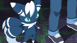 Jay Meowstic.png