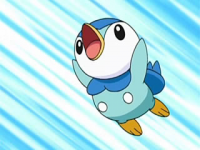 Ash Piplup.png