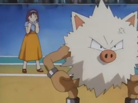 O-Hina Town Primeape.png