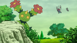 Maractus Butterfree Terre Selvagge.png