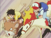 Grande corsa Pokémon Raticate.png