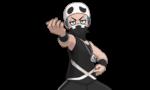 Recluta Team Skull