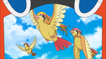Laboratorio Professor Oak Pidgeot.png