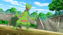 Sandro Sceptile.png