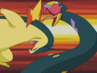 Mr Moore Typhlosion Bottintesta.png
