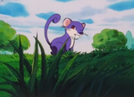 Kanto Route 1 Rattata.png