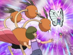 PSA Dodrio Butterfree.png