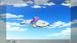 Monte Montalto Butterfree.png